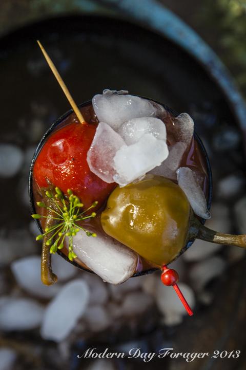 tomato-38