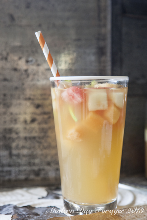 Melon Sangria by Modern Day Forager