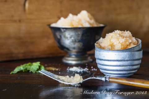 Cantaloupe Granita by Modern Day Forager